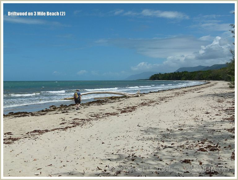 Three Mile Beach at Port Douglas in Queensland, Australia