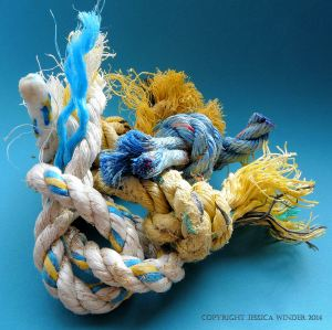 Short pieces of knotted rope found on the seashore