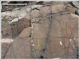 Basalt rock texture and fracture patterns at Red Point