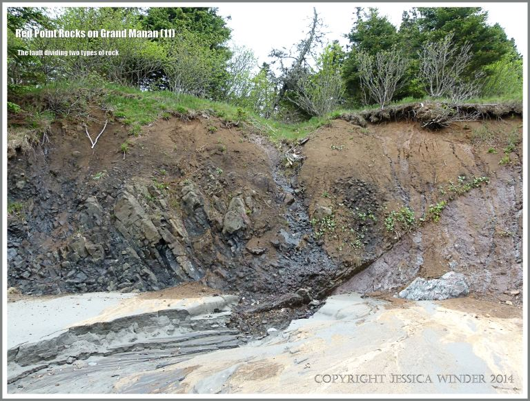 The geological fault between basalt on the left and meta-siltstone on the right  at Red Point on Grand Manan Island.