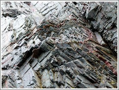 Colour, texture, and fracture patterns in laminated meta-siltstone of the Long Pond Bay Formation