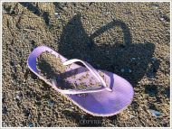 Lilac flip-flop sandal washed up on sand