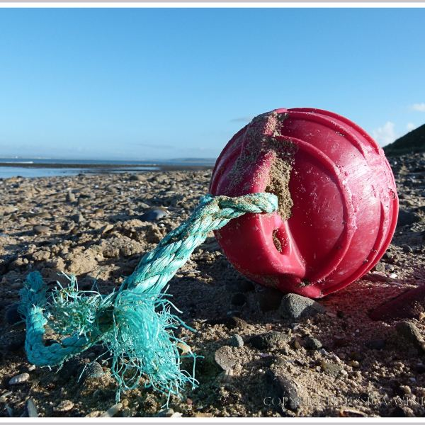 Red plastic fishing float with green rope washed ashore at Whiteford Sands