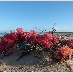 Red and orange nets and bags washed up as flotsam