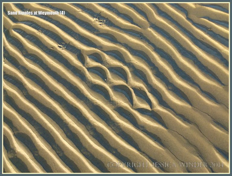 Seashore sand ripple patterns