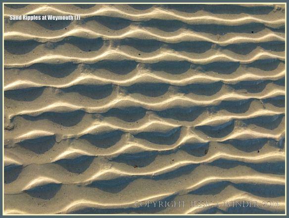 Seashore sand ripple patterns