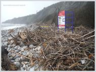 Driftwood storm debris on a shingle beach in Dorset