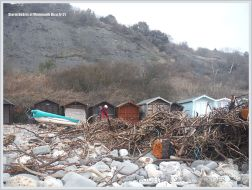 Driftwood storm debris by beach huts at Lyme Regis in Dorset (England)