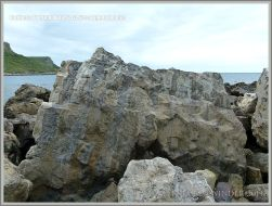 Beach boulder of Portland Cherty Series