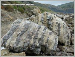 Beach boulders of Portland Cherty Series