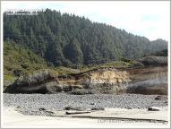 Sea cliff exposing raised beach deposits at Neptune State Park in Oregon, USA