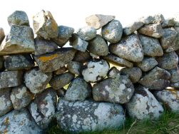 A stone wall at Dogs Bay