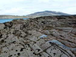 Glaciated granite bedrock on the shore near Dogs Bay