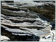 Close-up of layers in Kimmeridge Shale