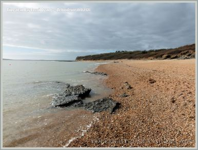 Low-shore rock outcrop with fossil oysters at Ringstead Bay on the Jurassic Coast
