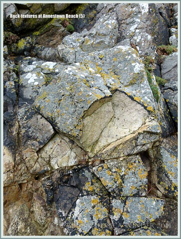 Close-up of Ordovician volcanic rock texture in cliffs at Annestown