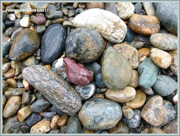 Natural patterns, shapes and textures in pebbles on the beach