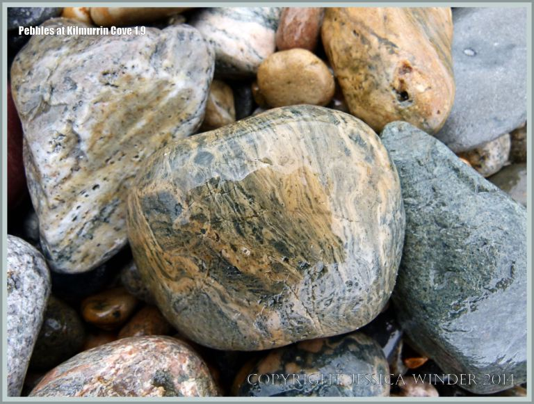 Natural pattern of banding in a rhyolite pebble