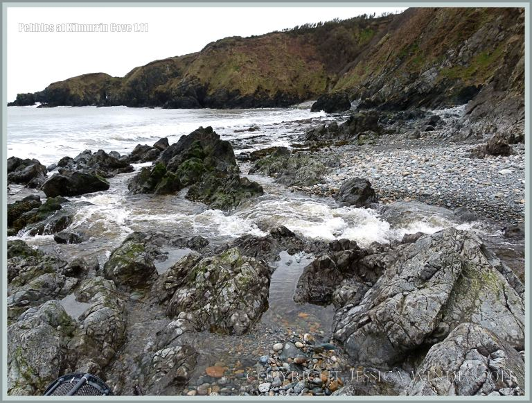 View of the west end of Kilmurrin Cove with stream crossing exposed Ordovician rocks