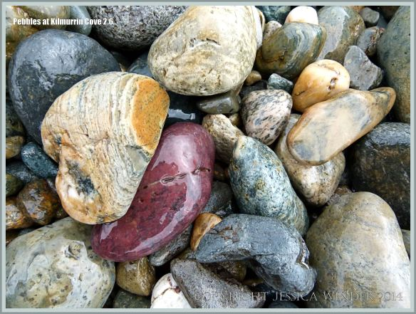 Kilmurrin Cove pebbles on the Copper Coast in Ireland