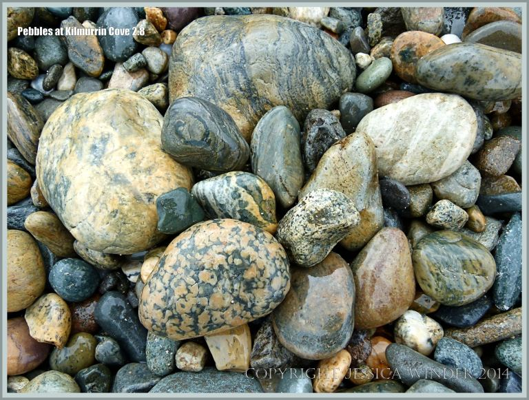 Pebbles with spots and stripes at Kimurrin Cove