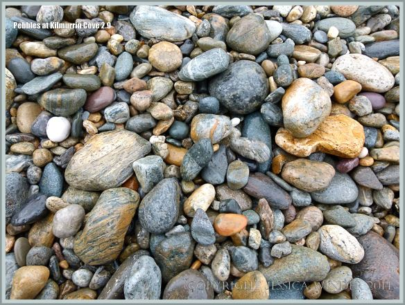 Wet beach stones of mainly Ordovician volcanic origin