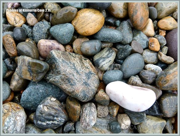 Wet beach stones at Kilmurrin Cove