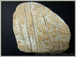 Beach stone made of Cork Group Namurian rock