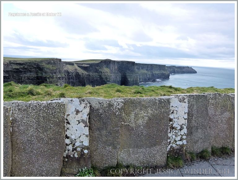 Liscannor flags with Olivellite trace fossils and lichens in a wall at the Cliffs of Moher