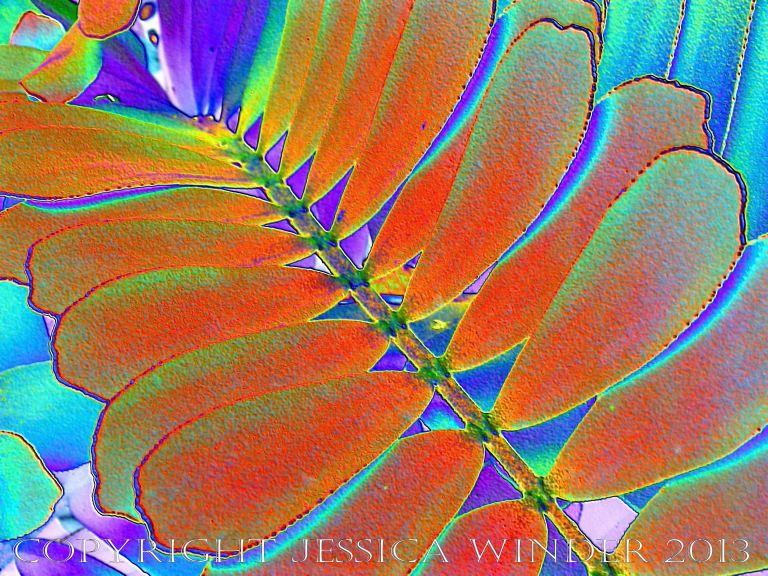 Leaf art