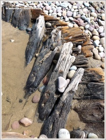 Detail of timbers in a shipwrecked wooden boat on the beach