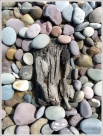 Detail of timbers in a shipwrecked wooden boat among pebbles on the beach