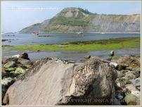 Rock textures on the Dorset coast