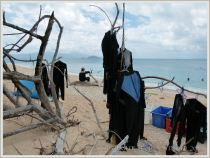 """""""Stinger"""" suits hanging up to dry on Normanby Island beach"""