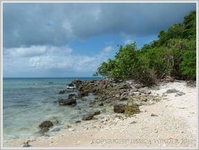 Tropical island beach off the Queensland coast