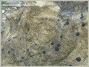Rock textures with fosill ammonite impression on the Dorset coast