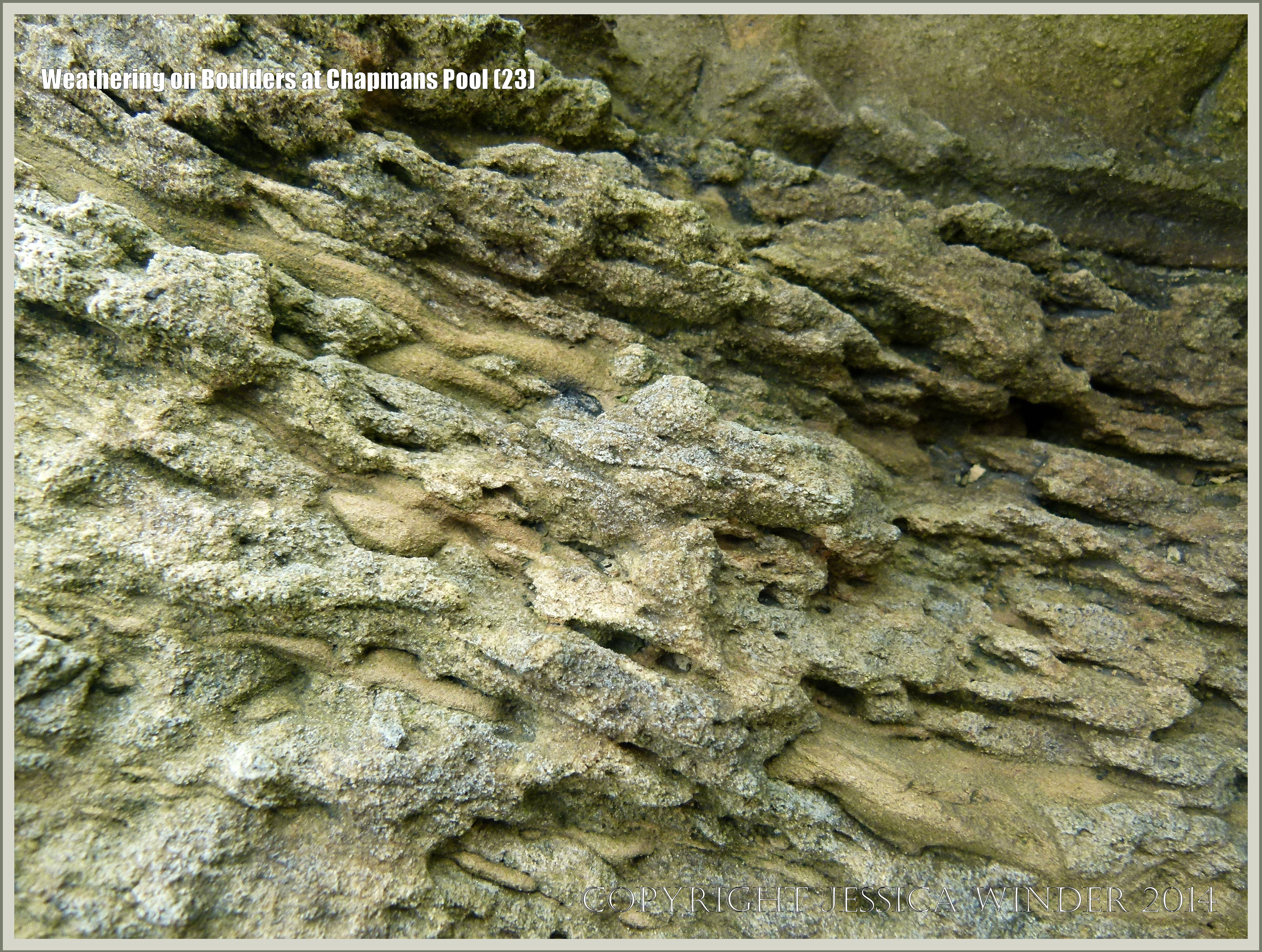Weathering on Boulders at Chapmans Pool – Jessica's Nature ...