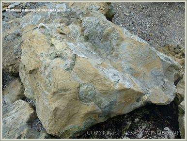 Rock textures on the Dorset coast