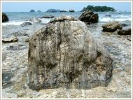 Beach boulder on Normanby Island