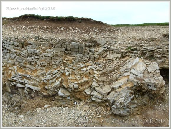 Possible periglacial rock structures beneath the lower raised beach on the Isle of Portland