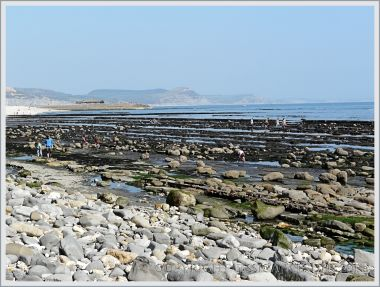 View across the rock layers and boulders of Monmouth Beach looking towards the Cobb and Golden Cap