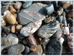 Pebbles at Pettes Cove on Grand Manan