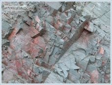 Close-up of Red point rock on Grand Manan