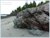 Rock outcrops at Red Point in Anchorage Provincial Park on Grand Manan