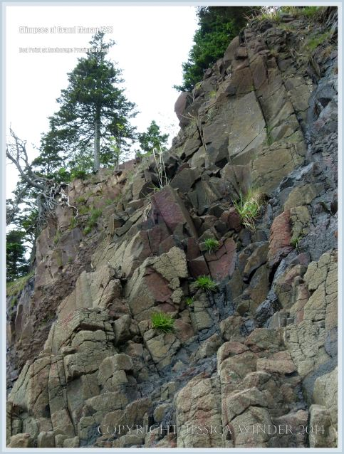 Red Point rocks on Grand Manan