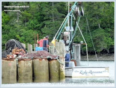 Fishermen at Dark Harbour on Grand Manan
