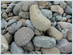 Beach stones at Whale Cove on Grand Manan