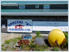 Lobster transit depot on Grand Manan