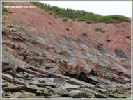Cliffs and reef near Coal Mine Point at Joggins Fossil Cliffs