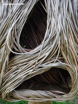 Close-up of the basketwork weaving of a larger than life willow sculpture of fungi by Tom Hare